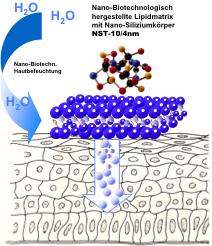 Zoom: nano-biologische_pflegewirkung_auf_die_haut_.png